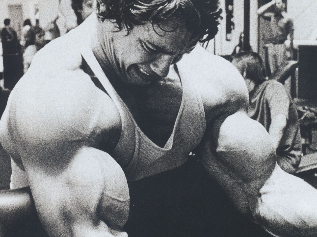 arnold_schwarzenegger_actor_producer_director_young_bodybuilding_74040_1280x960-jpg.88 | Второй год. Четвёртое полугодие